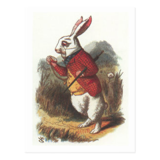 Carte Postale M. Rabbit !