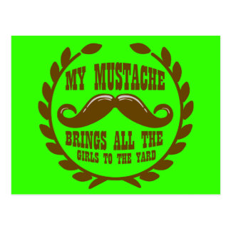 Carte Postale Ma moustache amène toutes les filles à la cour