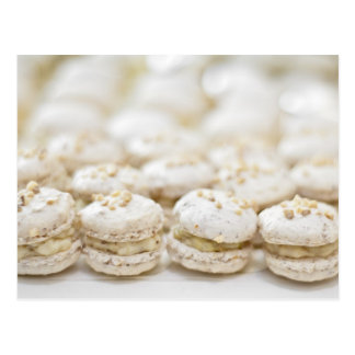 Carte Postale Macarons blancs