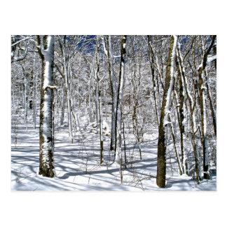 Carte Postale Magie de montagne de Ridge bleu sous un charme
