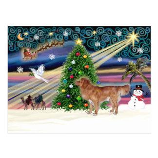 Carte Postale Magie-Nouvelle-Écosse-support de Noël