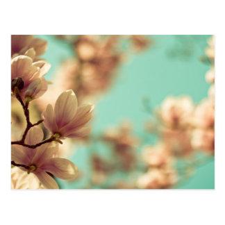 Carte Postale Magnolia molle de foyer