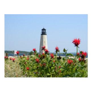 Carte Postale Malle, phare du Michigan