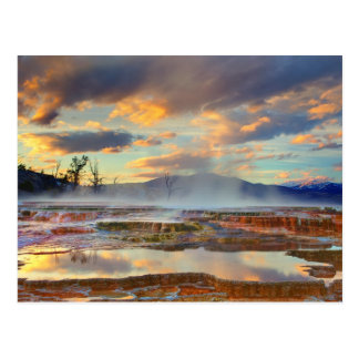 Carte Postale Mammoth Hot Springs