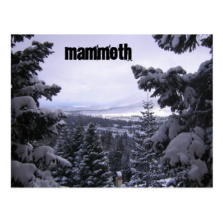 Carte Postale Mammoth Mountain