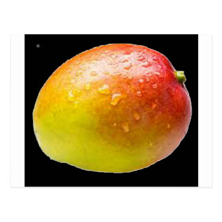 """Carte Postale """"Mangue """""""