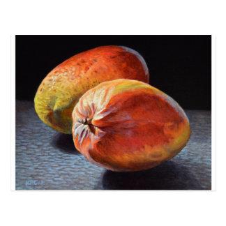 Carte Postale Mangues exotiques