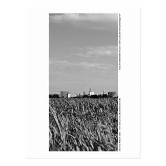 Carte Postale Mannheim - Skyline