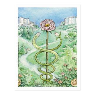 Carte Postale Manteau blanc, monde vert (carte postale)