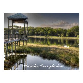 Carte Postale Marais de la Floride