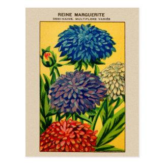 Carte Postale Marguerite française vintage de la Reine de paquet