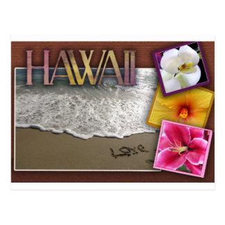 Carte Postale Mariage de destination - Hawaï