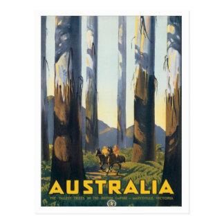 Carte Postale Marysville vintage Victoria Australie