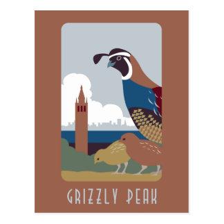 Carte postale maximale grisâtre