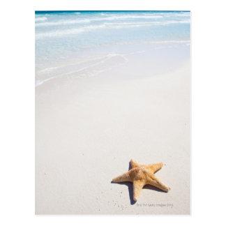 Carte Postale Maya de la Riviera