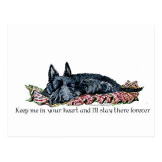 Carte Postale Mémoire d'écossais Terrier
