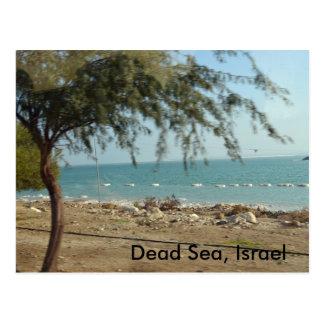 Carte Postale Mer morte, Israël