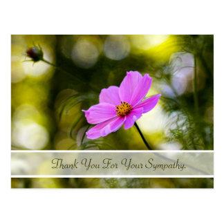 Carte Postale Merci de sympathie même le fleur sauvage rose de