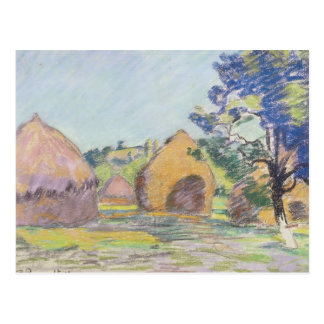 Carte Postale Meules de foin au Saint-Cheron