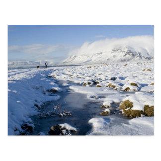 Carte Postale Milou Winterland