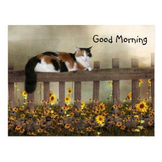 Carte Postale Minou de calicot bonjour
