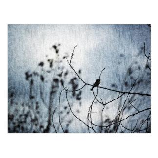 Carte postale minuscule de silhouette d'oiseau