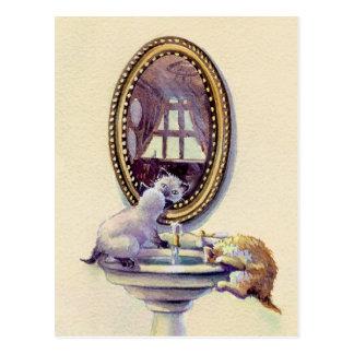 Carte Postale MIROIR de CHATON par SHARON SHARPE