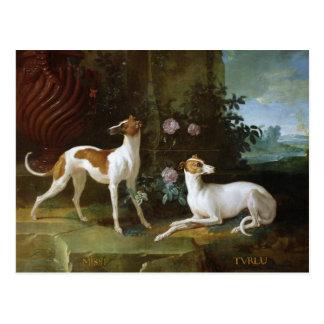 Carte Postale Misse et Turlu, deux lévriers de Louis XV