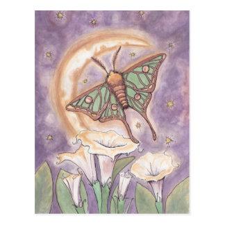Carte Postale Mite et Moonflowers