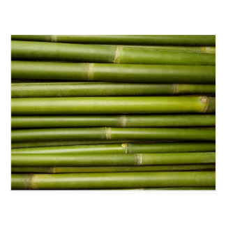 Carte Postale Modèle customisé par arrière - plan en bambou