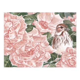 Carte Postale Moineau de chanson et peinture rose de fleur de