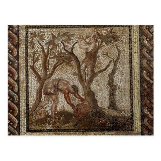 Carte Postale Moissonnant des raisins, de Saint-Romain-en-Gallon