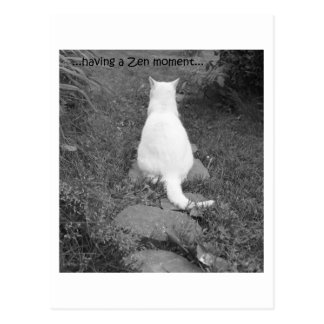 Carte Postale Moment de zen