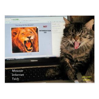 Carte Postale Mon chat étudie à la technologie d'Internet de MIT