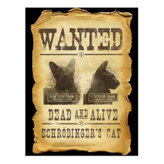 Carte Postale Morts et vivant voulus.  Le chat de Schroedinger