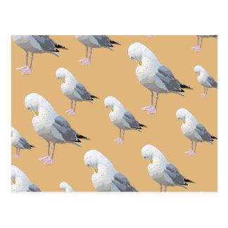 Carte Postale Motif lissant de mouette, style esquissé sur TAN