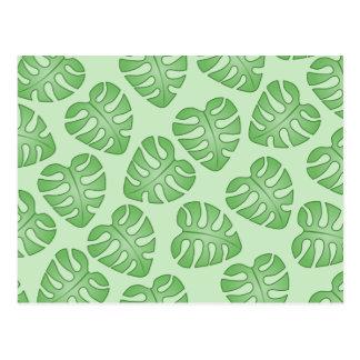 Carte Postale Motif vert de feuille, feuilles de Monstera