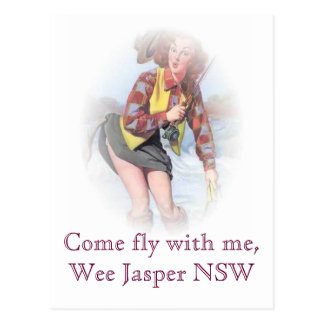 Carte Postale Mouche veneze avec moi, jaspe petit NSW