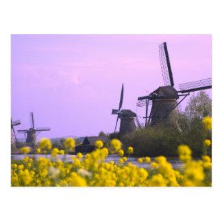 Carte Postale Moulins à vent le long du canal dans Kinderdijk,