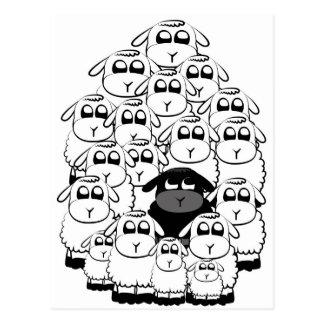 Carte Postale Moutons noirs
