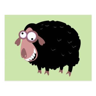 Carte Postale Moutons noirs drôles