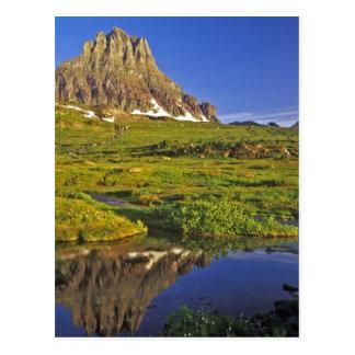 Carte Postale Mt Clements se reflète dans la petite piscine chez