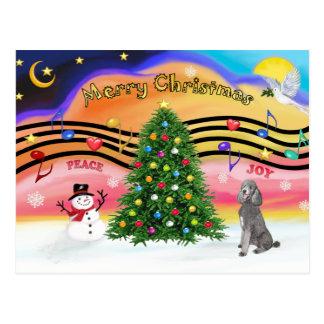 Carte Postale Musique 2 de Noël - caniche (étalon argent)