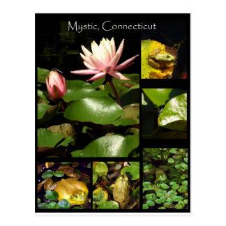 Carte Postale Mystique, le Connecticut