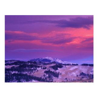 Carte Postale Na, Etats-Unis, Wyoming, Yellowstone NP, vallée de
