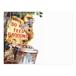 Carte Postale N'alimentez pas le babouin