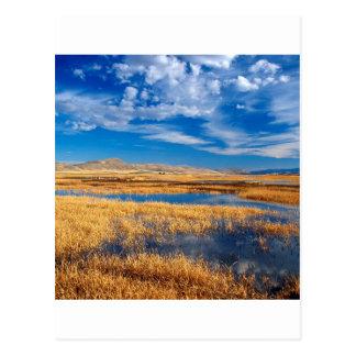 Carte Postale Nature inférieure de lac klamath de ciel