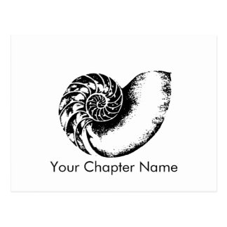 Carte Postale Nautilus de delta de Kappa