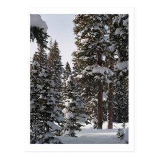 Carte Postale Neige sur le MESA