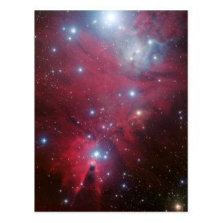 Carte Postale NGC 2264 et le groupe d'arbre de Noël